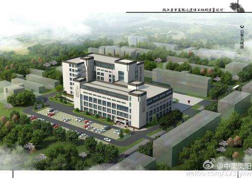 凤阳中医院