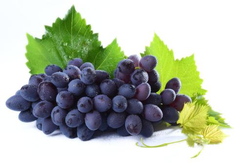 白癜风患者可以吃葡萄吗