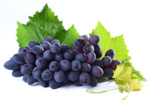 得了白癜风能吃葡萄吗?